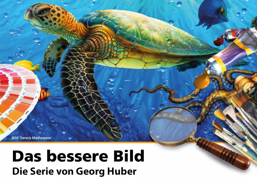 Das bessere Bild – Die Serie von Georg Huber